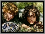 karty, trawa, Elijah Wood, The Lord of The Rings, Sean Astin