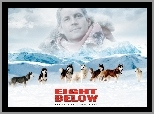 góry, Paul Walker, psy, Eight Below
