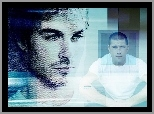 Ian Somerhalder, Matthew Fox, Lost, Serial, Zagubieni