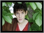 Colin Morgan, Aktor, Przygody Merlina, Serial, The Adventures of Merlin