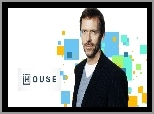 Hugh Laurie, Dr House, Serial