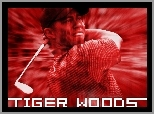 Sportowe Golf, Tiger Woods